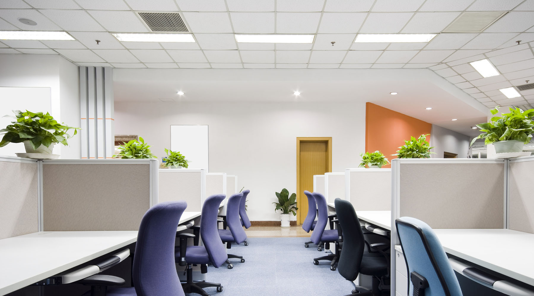 Suspended Ceiling Installation Dublin | Clean Office with Suspended Ceiling | Kehoe Suspended Ceilings